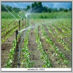 Agricultural risk management of a peri-urban water recycling scheme[taliem.ir]