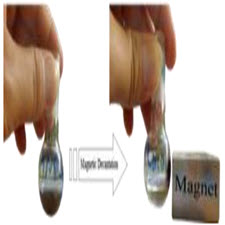 Application of magnetic-taliem-ir (Copy)
