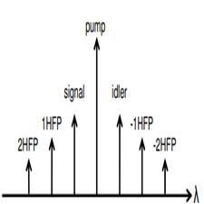 Asymmetric gain-saturated spectrum in fiber[taliem.ir]