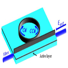 Bistability and Switching Properties of Semiconductor Ring Lasers With External Optical Injection