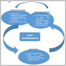 EFFECTS OF ENVIRONMENTAL AUDIT AND ECONOMIC SUSTAINABILITY[taliem.ir]