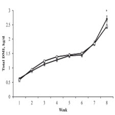 Effect of physical form of forage on performance, feeding behavior, and digestibility of Holstein calves