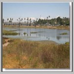 Emerging Stormwater Controls for Critical Source Areas[taliem.ir]
