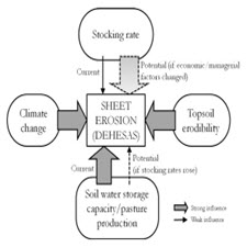 Evaluating the influence of physical, economic and managerial factors on[taliem.ir]