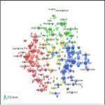 Global trends in research-taliem-ir