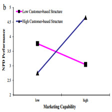 Marketing capability, organizational adaptation and new product development performance