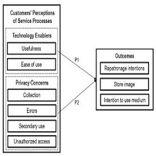 Big data initiatives in retail environments: Linking service process perceptions to shopping outcomes