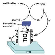 TiO2 and its composites as promising biomaterials-taliem-ir