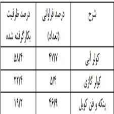 بررسی الگوی مصرف برق اصناف شهر مشهد و مدیریت مصرف بهینه