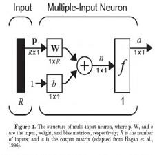 structure_multi_input